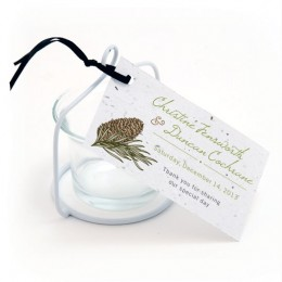Pinecone Plantable Favor Tags-Pinecone Plantable Favor Tags
