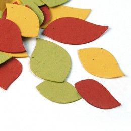 Autumn Leaf Eco Confetti-Autumn Leaf Eco Confetti