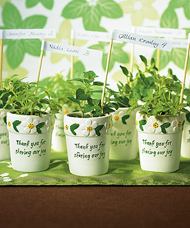 Mini Flower Pots (Set of 6)-Mini Flower Pots