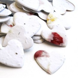 Heart Shaped Plantable Confetti - Set of 350-Heart Shaped Plantable Confetti